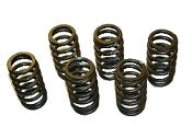 Cummins 3916691 / C14010 HD Valve Spring set of six (6)